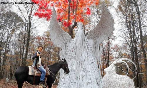 クリスタルパーク内に直径50メートルの円を作って展開する天使計画の作品の一部(撮影:Guido Morales)